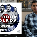 UFC London: Werdum vs Volkov Analysis